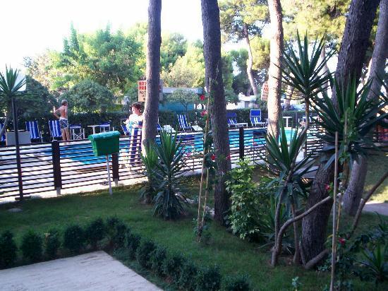 Family Hotel Promenade: pineta