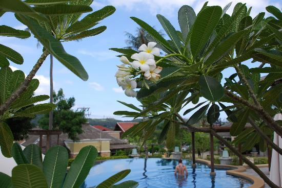 Mayaburi Boutique Resort: piscine