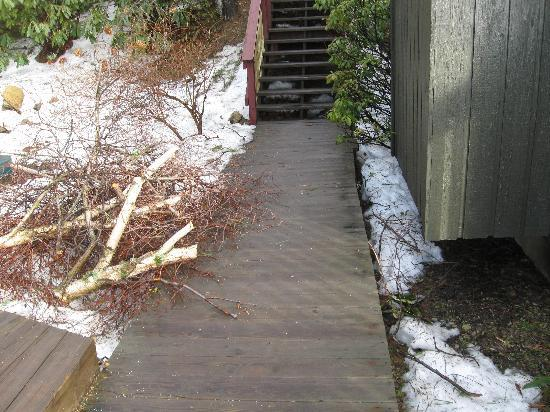 Archer's Mountain Inn: Wood pile on walkway
