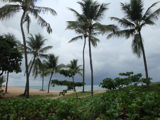 Grand Mercure Recife Boa Viagem: Boa Viagem Beach