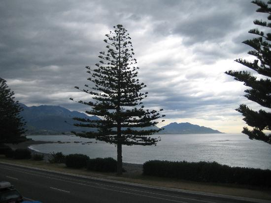 Kaikoura Apartments: View