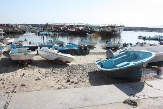 Al Liwa Photo