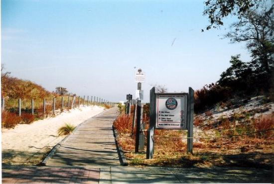Nude beaches in new jersey foto 18