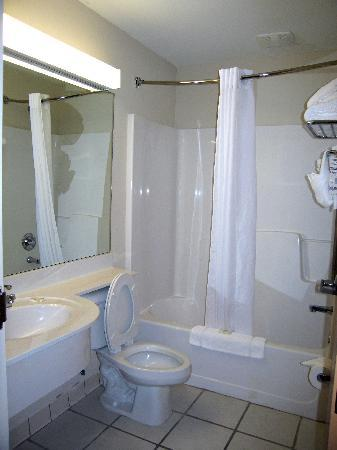 Microtel Inn & Suites by Wyndham Conyers Atlanta Area: Room 102 Bathroom