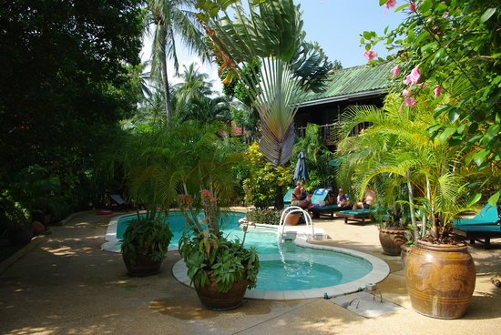 Eden Bungalows : la piscine
