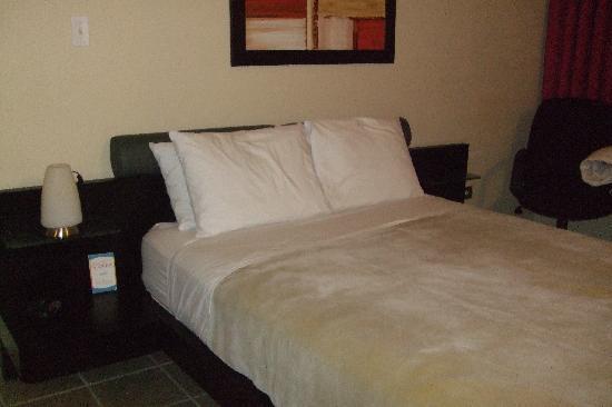 Comfort Inn & Suites Levittown : sleeping area