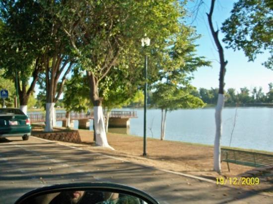 Ciudad Obregon, Mexico: Laguna Nainari, Obregon Sonora