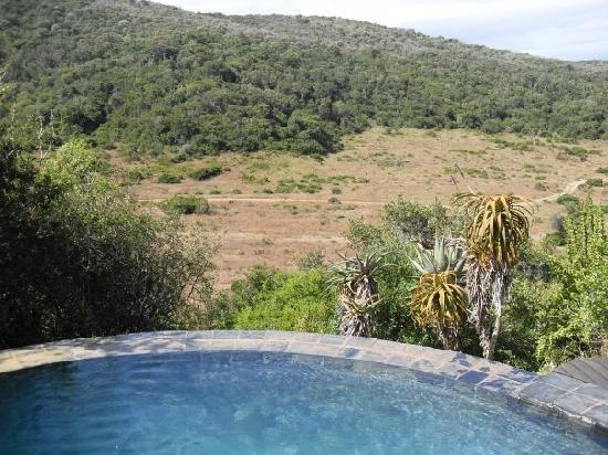Hopewell Lodge: The view from the pool