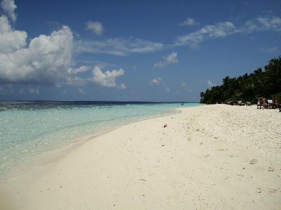 Vilamendhoo Island Resort & Spa: la spiaggia in prossimità della punta ovest