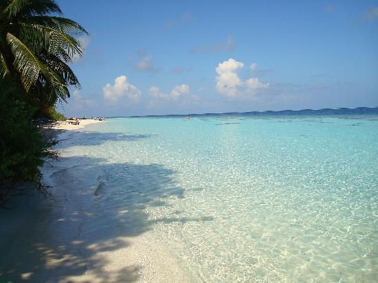 Vilamendhoo Island Resort & Spa: spiaggia adiacente il nostro bungalow