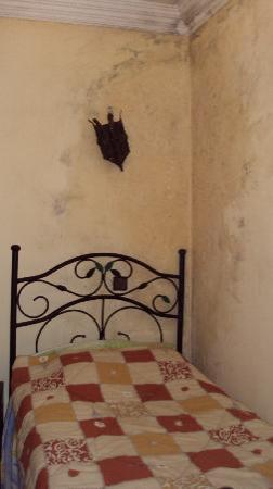 Riad Rahba Marrakech: Ma chambre avec tout le mur moisi