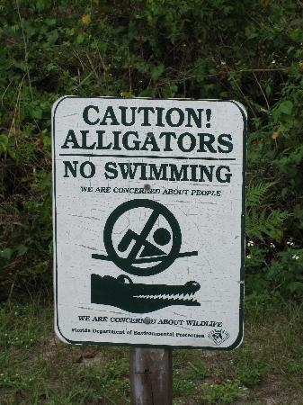 Клермон, Флорида: Lake Louisa SP - Dixie Lake alligator warning!