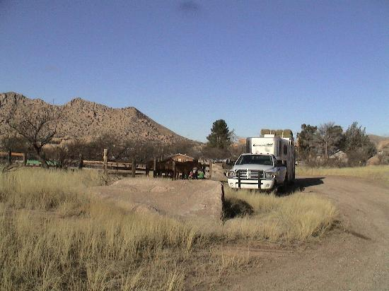 Triangle T Guest Ranch: Horses & trailer at Triangle T. For a Canadian from Manitoba, this was a wonderland! Would like