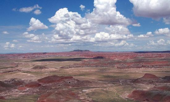 Petrified Forest National Park, AZ: Painted desert
