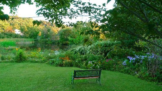 Pond House: looking toward Pond -2