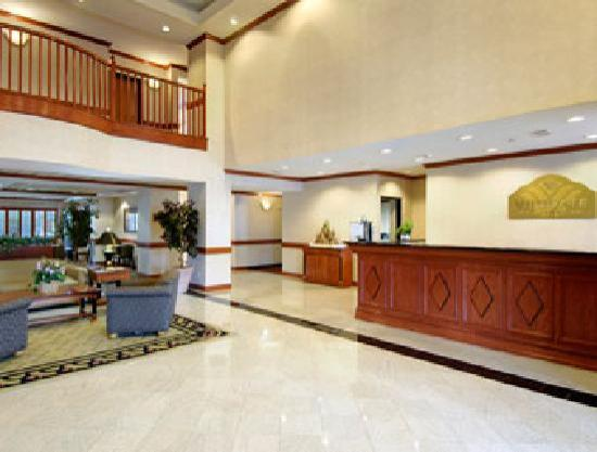 Wingate by Wyndham Houston / Willowbrook: Front Desk Lobby