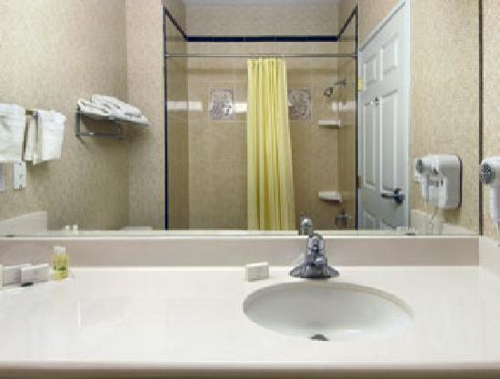 Wingate by Wyndham Houston / Willowbrook: Bathroom