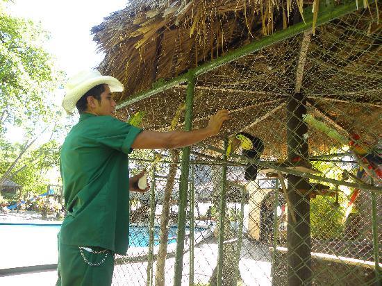 Barcelo Montelimar : les oiseaux
