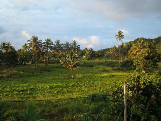 Muri Heights Villas: Surrounding area