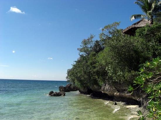 Alegre Beach Resort: Alegre Resort