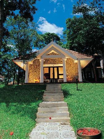 Hotel Treetop: Treetop Cottage