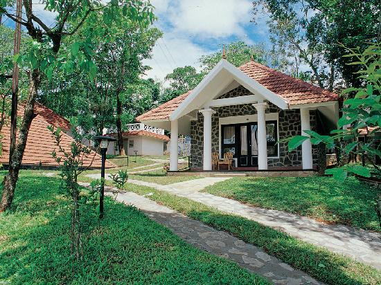 Hotel Treetop: Treetop Cottage 2