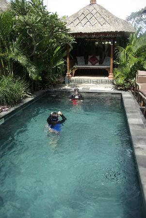 Tirtarum Villas, Canggu Bali: The private pool and day bed
