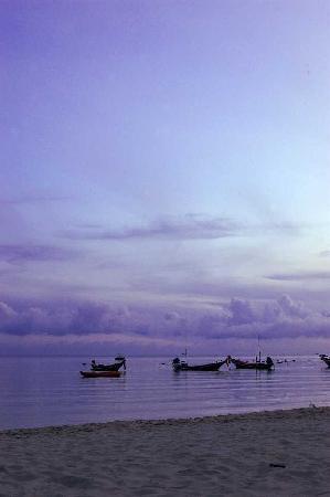 Havana Beach Resort: Beach