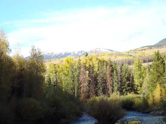 Super 8 Dillon/Breckenridge: Aspens turning Blue River Sept 09 near Dillon, CO