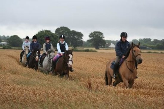 Annaharvey Farm Equestrian Centre Tullamore Updated