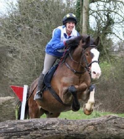 Annaharvey Farm Equestrian Centre : Jumping Cross country