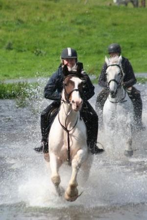 Annaharvey Farm Equestrian Centre : Riding in water