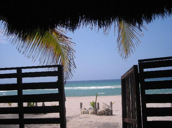 Honduras Shores Plantation: Beach