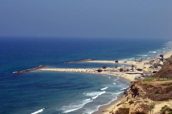 Carmel Hotel Holiday Apartments: Netanya view from CARMEL