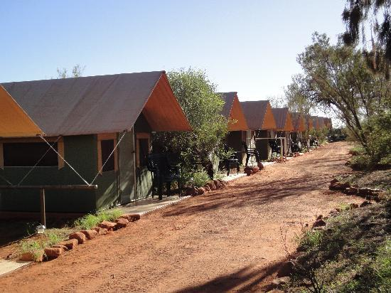 Kings Creek Station: tent line