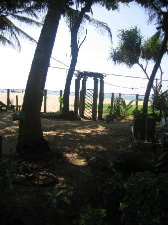 Dephani Beach Hotel: gate from the front garden to beach
