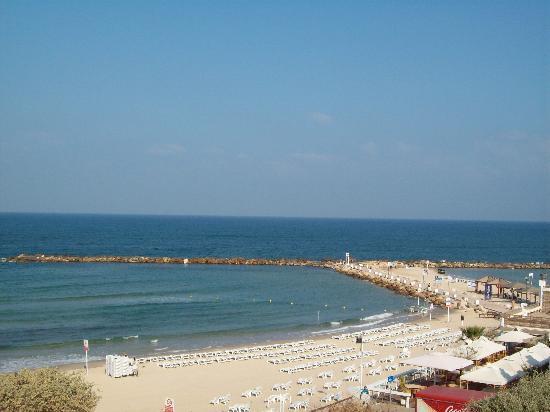 Hilton Tel Aviv: beach in front of the hotel