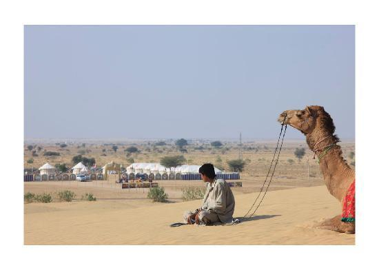 Mehar Adventure Safari Camp : camp view from the dunes