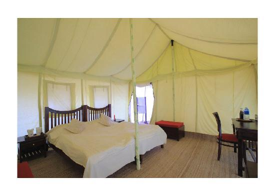 Mehar Adventure Safari Camp : what a nice accommodation