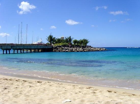 Sugar Cane Club Hotel & Spa : The local marina