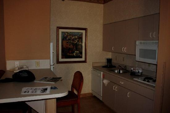 Hampton Inn & Suites Tampa - North : Kitchen