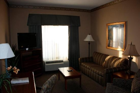 Hampton Inn & Suites Tampa - North : Living Area