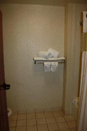 Hampton Inn & Suites Tampa - North : Toilet and Tub Room
