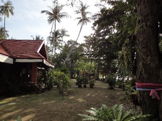 Baan Mai Cottages: Cottages