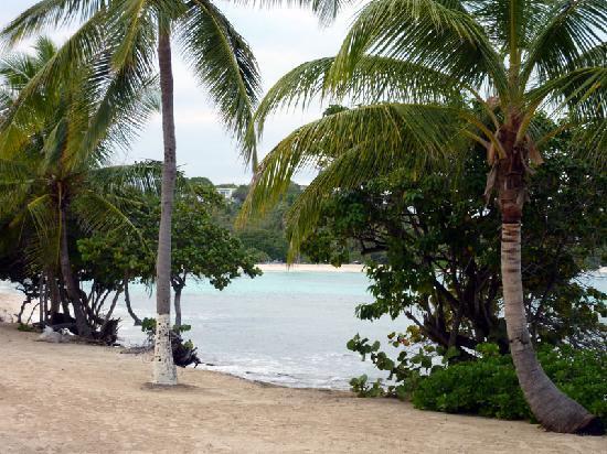 Crystal Cove Beach Resort on Sapphire Bay: Sapphire Beach