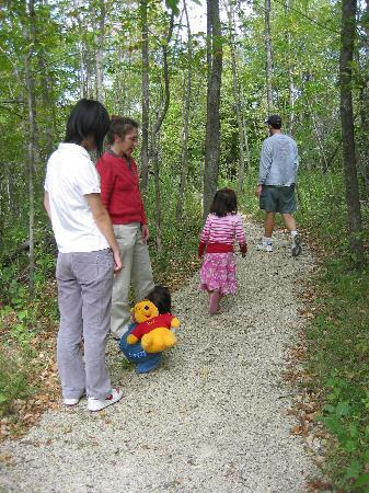Newburg, WI: The whole family can enjoy a hike in the woods.