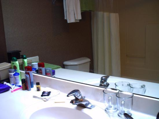 Travelodge Suites by Wyndham Savannah Pooler: bathroom