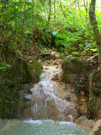 Jasmine Spa and Wellness: The waterfall coming out of the mountain.