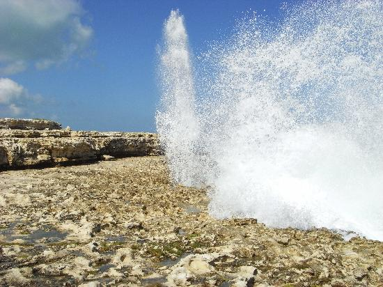 Saint Philip Parish, Antigua: Blowhole at Devils Bridge
