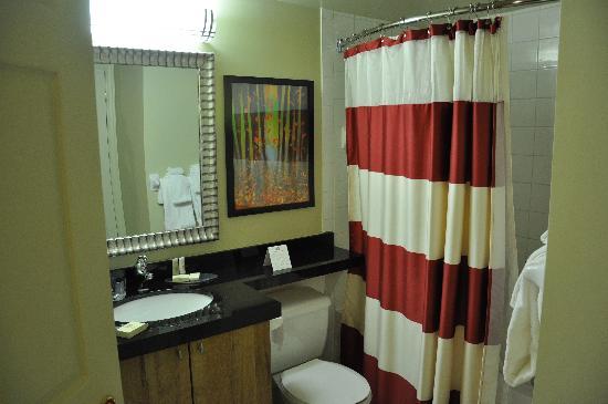 Residence Inn Mont Tremblant Manoir Labelle: bathroom